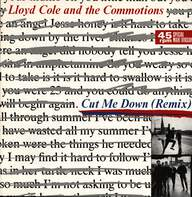 Lloyd Cole & The Commotions: Cut Me Down (Remix)