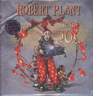 Robert Plant: Band Of Joy