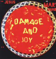The Jesus And Mary Chain: Damage And Joy