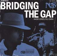 Nas: Bridging The Gap