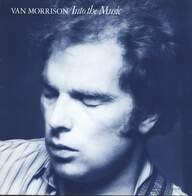 Van Morrison: Into The Music