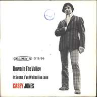 Casey Jones & The Governors: Down In The Valley