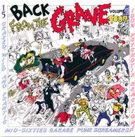 Various: Back From The Grave Volume 4