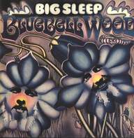 Big Sleep (2): Bluebell Wood