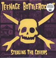 Teenage Bottlerocket: Stealing The Covers