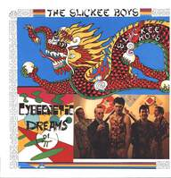 The Slickee Boys: Cybernetic Dreams Of Pi