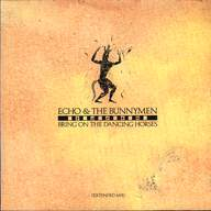Echo & the Bunnymen: Bring On The Dancing Horses