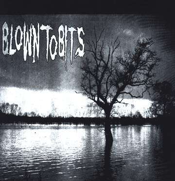 Blown To Bits: Blown To Bits Benefit Record