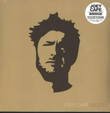 Joey Cape: Bridge