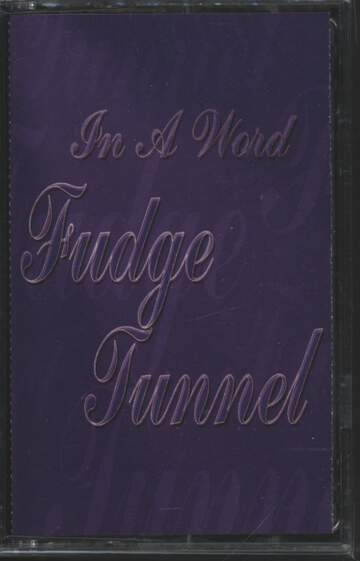Fudge Tunnel: In A Word