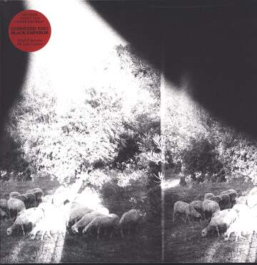 Godspeed You Black Emperor: Asunder, Sweet And Other Distress