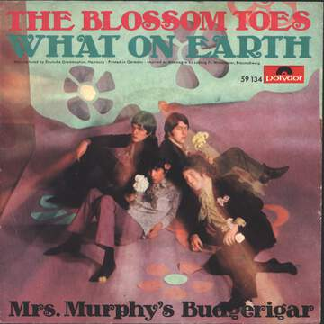 Blossom Toes: What On Earth