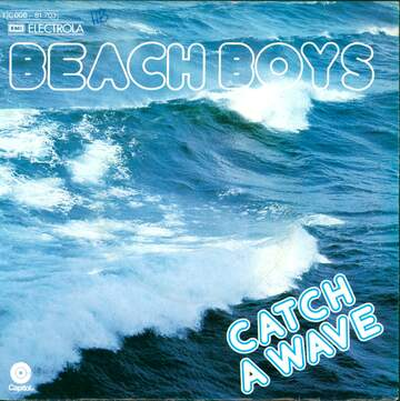 The Beach Boys: Catch A Wave