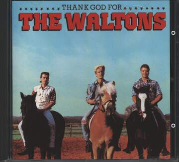 The Waltons: Thank God For The Waltons