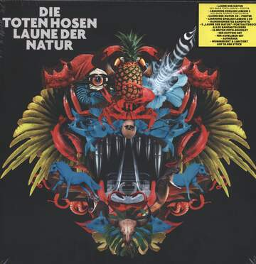 Die Toten Hosen: Laune Der Natur / Learning English Lesson 2