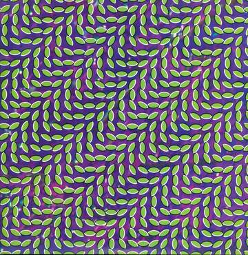 Animal Collective: Merriweather Post Pavilion