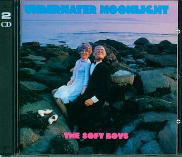 The Soft Boys: Underwater Moonlight