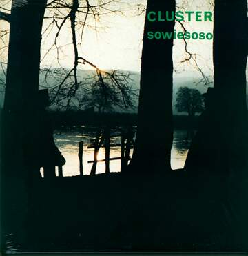 Cluster: Sowiesoso