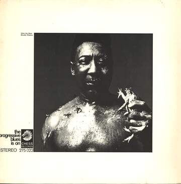 Muddy Waters: After The Rain
