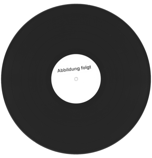 "Kopfsteinpflaster: Anarchy, 7"" Single (Vinyl)"