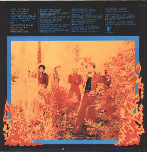 Meters: Fire On The Bayou, LP (Vinyl)