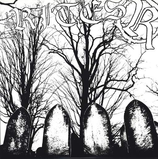 "The Rites: Wish You Never Knew, 12"" Maxi Single (Vinyl)"