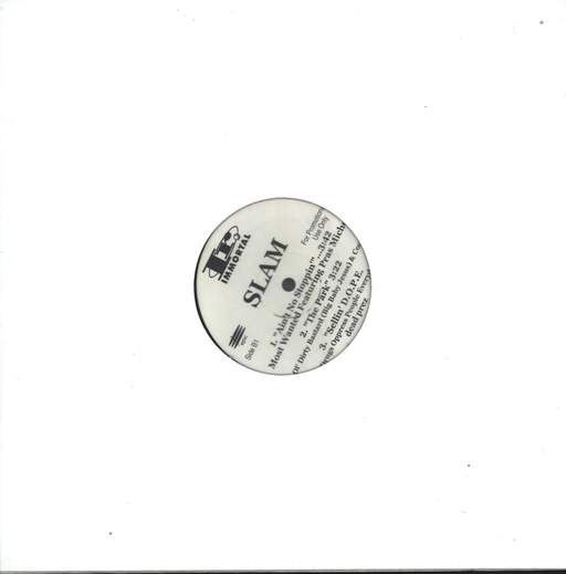 "Various: Slam - The Sampler, 12"" Maxi Single (Vinyl)"