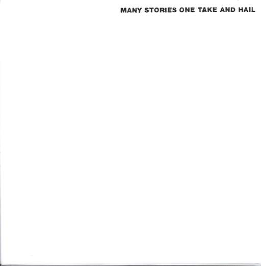 Ad'Absurdum: Many Stories One Take And Hail, LP (Vinyl)