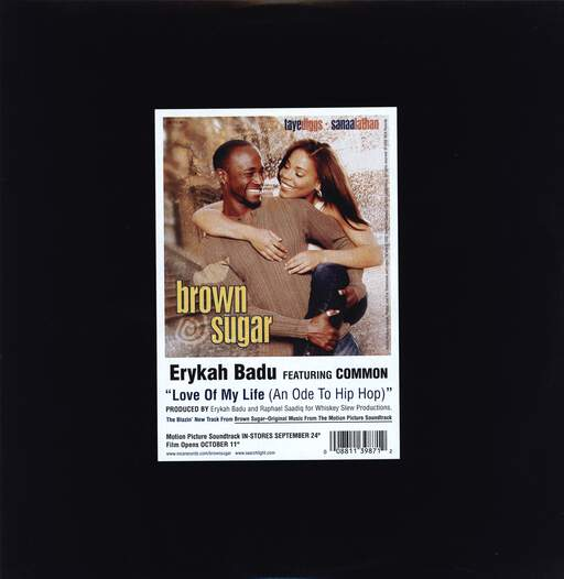 "Erykah Badu: Love Of My Life (An Ode To Hip Hop), 12"" Maxi Single (Vinyl)"