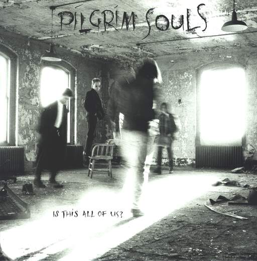 Pilgrim Souls: Is This All Of Us?, LP (Vinyl)