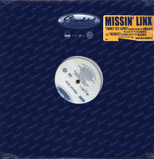 "Missin'linx: Family Ties (Remix) / Hotness, 12"" Maxi Single (Vinyl)"