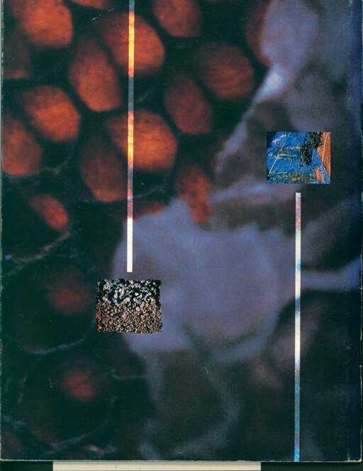 David Sylvian In Praise Of Shamans - An 80 Day Tour Of The World March/June 1988